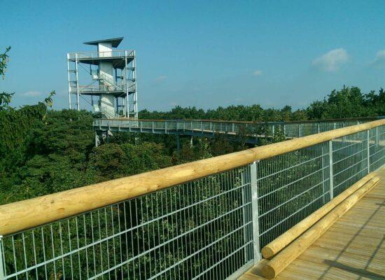 Baumkronenpfad - Beelitz